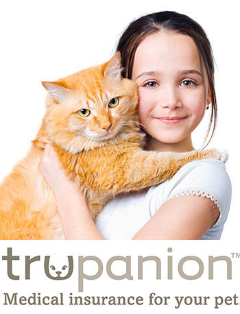medical insurance for your pet from trupanion
